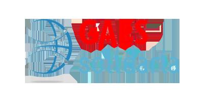 Logo GAES