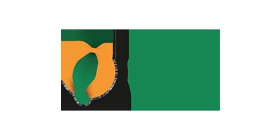 Logo Nebur